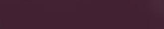 Violet lucios